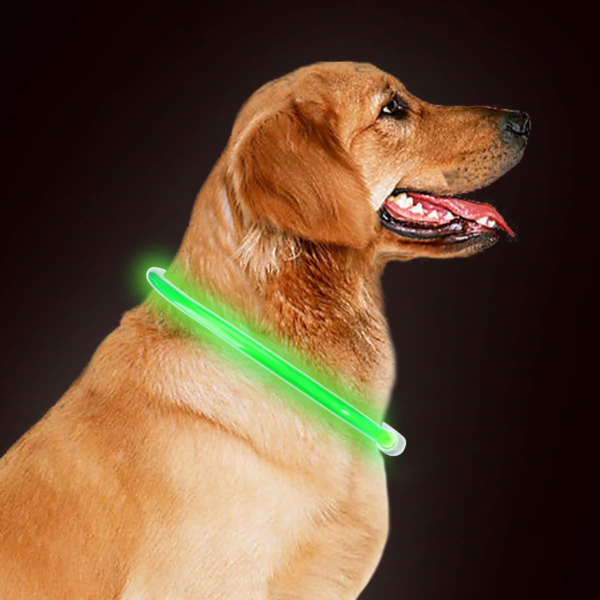 takyu Led Halsband Leuchthalsband für Hunde, 70cm universell kürzbar, wiederaufladbar über USB Kabel