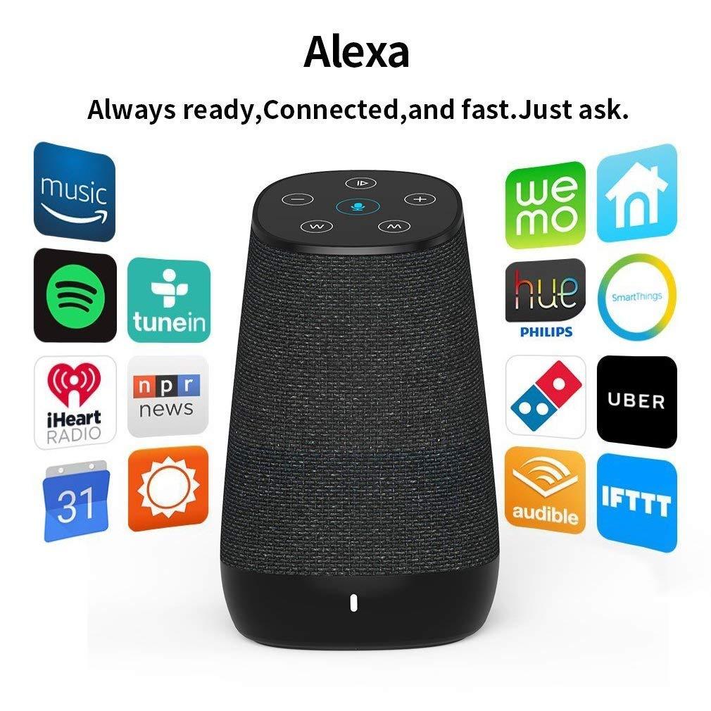 Bluetooth Lautsprecher mit Alexa Sprachservice