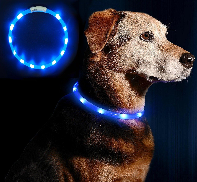 Anicoll LED Leuchthalsband Hunde Halsband USB wiederaufladbar