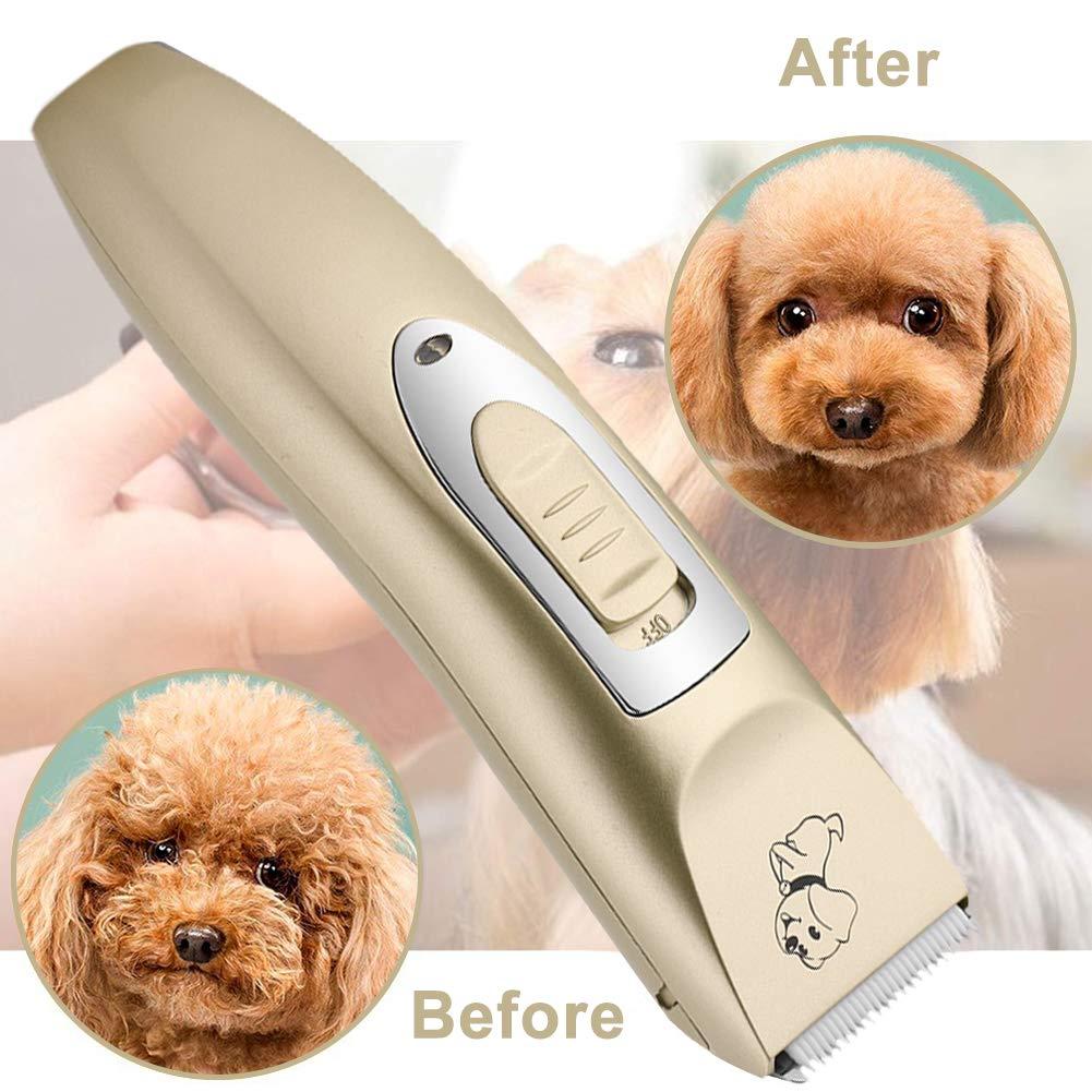 Haofy Tierhaarschneider Profi Hundepflege-Set, wiederaufladbar Haarschneidemaschine für Haustiere, Hunde, Katzen, Geräuscharme Elektrische Quiet Clippers-Set