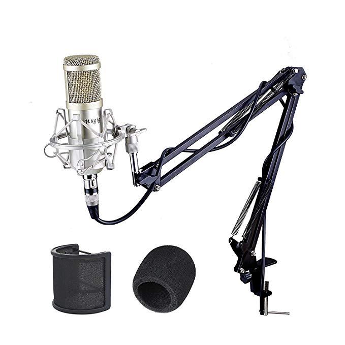 Mugig Mikrofon Kondensatormikrofon